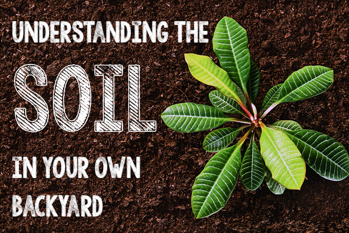 Soil in Your Backyard | Gardenerspath.com