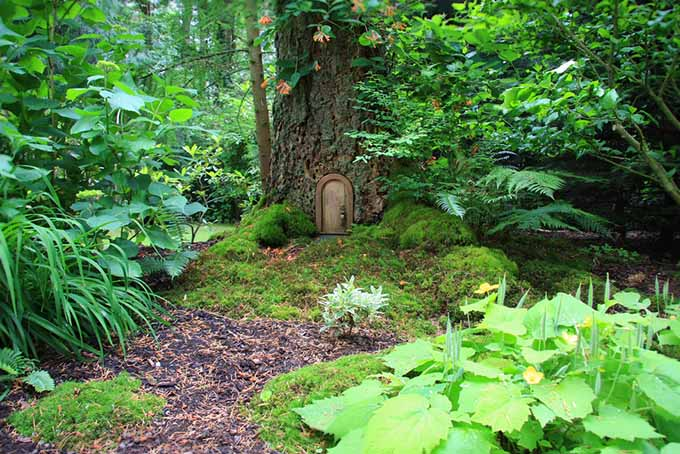 Plant World Folklore | GardenersPath.com