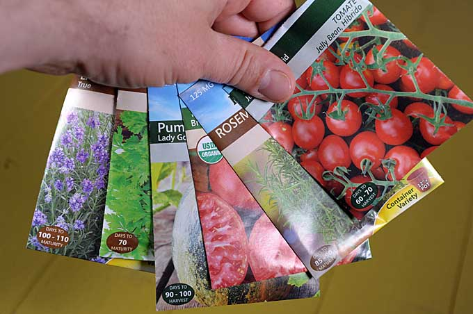 A human hand olds a cluster of seed packets of different varieties | Gardener