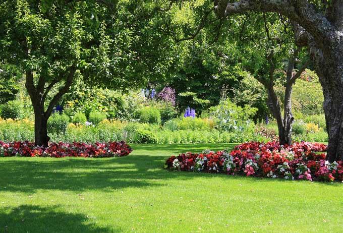 Choosing the Perfect Perennials for Your Shade | GardenersPath.com