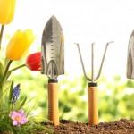 10 Top Gardening Tools