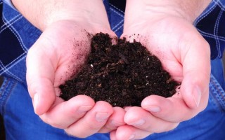 How To Make Compost Tea | GardenersPath.com