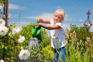 Designing a Child's Garden
