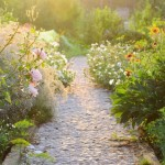 Tips to Keep Your Late Summer Garden Going Strong - Prettyacres.com