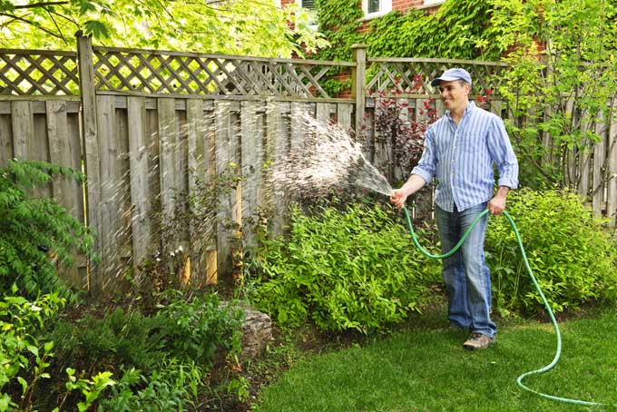 handsome man water landscape plants next to wooden privacy fence - Garden Hose
