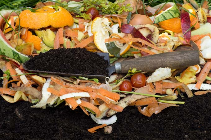 Black compost with a new layer of kitchen scraps on top, with a garden trowel.