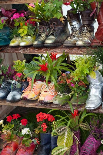 "A bunch of showe and boots on a shoe rack servey as an ""Artsy Fartsy"" garden for a small space"