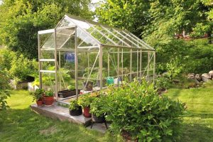 Avoid the Most Common Greenhouse Mistakes with These Tips