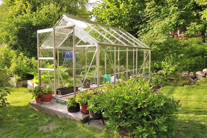 Mistakes to Avoid with Greenhouses | GardenersPath.com