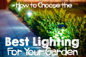 How to Choose the Best Lighting for Your Garden