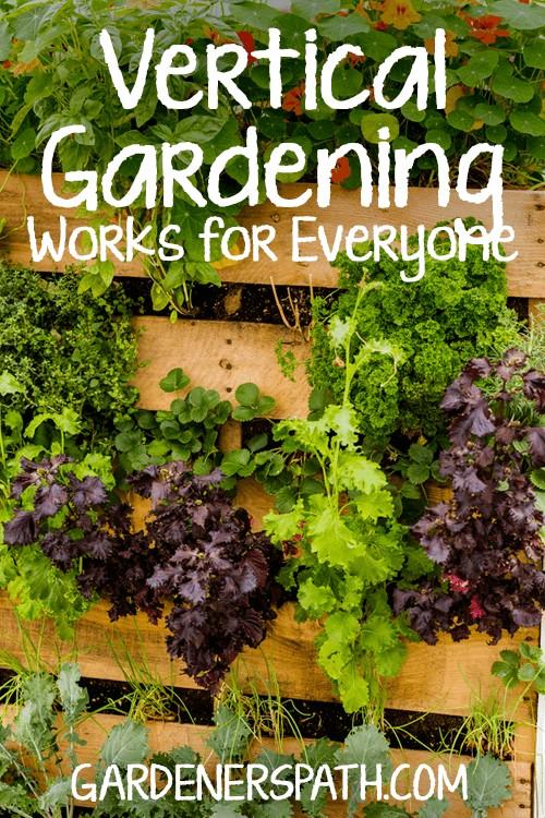 How to Make a Vertical Garden | GardenersPath.com