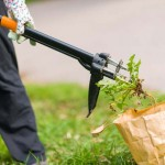 My Thoughts on Weed Removal | GardenersPath.com