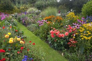 Reinventing the Cottage Garden to Fit Today's Busy Lifestyle