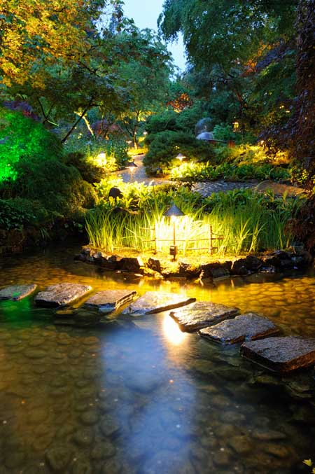 A vertical picture of a garden pond lit with outdoor lighting in the early evening.