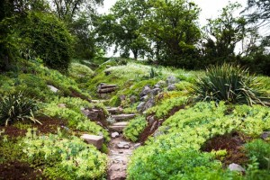 A Gardener's Notes: Making Peace With Boulders