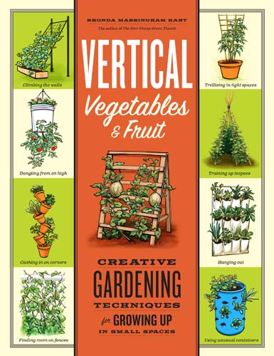 How to create a vertical garden gardener 39 s path - Growing vegetables in small spaces collection ...