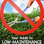 Want to cut down on all that effort you put into your yard, just to make it look good? Sink your loppers into these 10 tips that will lower your yard work requirements in no time, right here at Gardener's Path: https://gardenerspath.com/how-to/design/guide-low-maintenance-landscaping-planning/ 