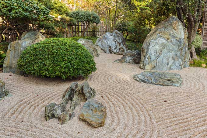 A close up of a neat and tidy Japanese style rock garden, with shrubs and boulders arranged in an informal fashion.