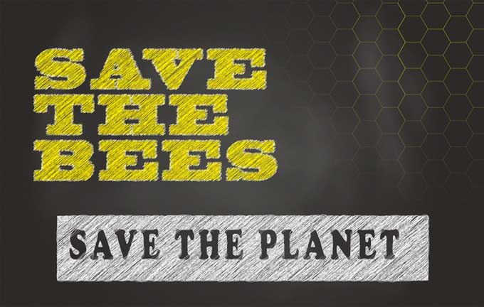 Save the Bees, Save the Planet | Gardnerspath.com