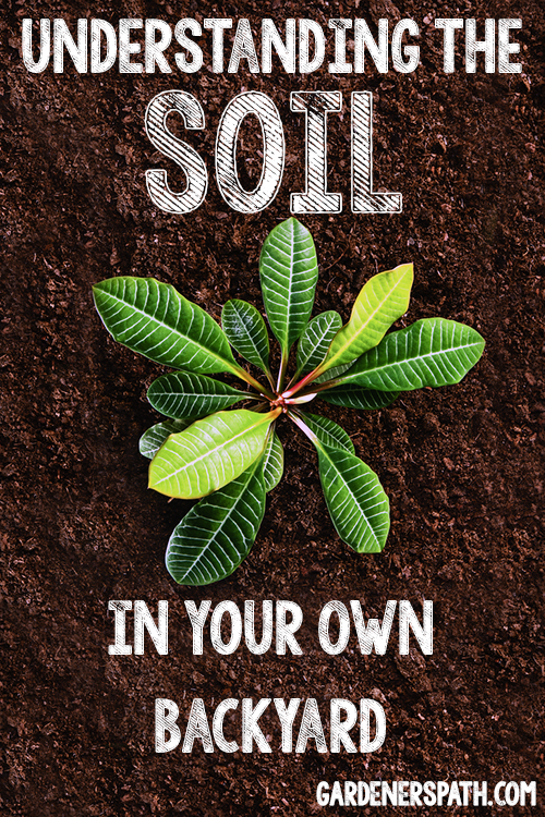 Understanding the Soil in Your Own Backyard | Gardenerspath.com