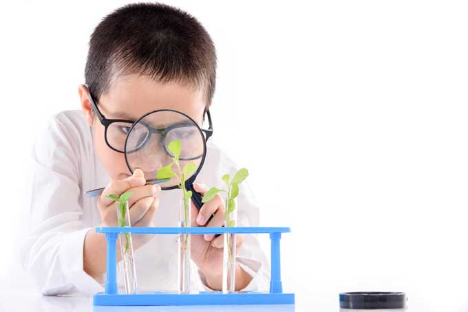 A close up of a child holding a magnifying glass, examining a plant growing in a test tube, on a white background.