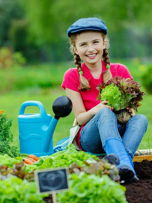 A child sits on the edge of a raised garden bed holding a lettuce plant, with a blue watering can to the left of the frame.