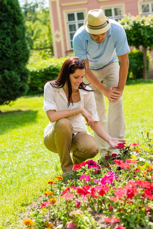 A man and a woman examine red flowers growing in a border in their garden, pictured in bright sunshine with a house in the background.