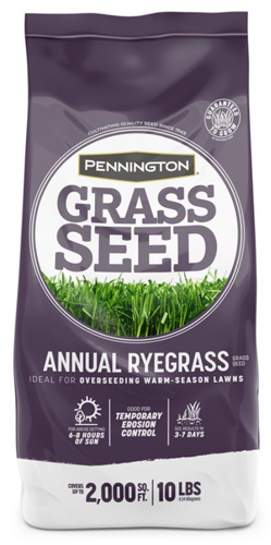 Annual Ryegrass Seed.