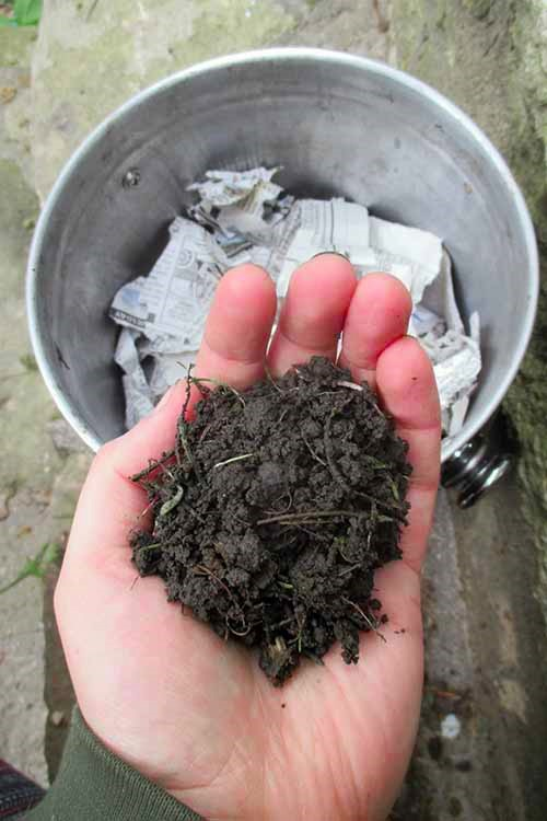 What's the most amazing companion for your garden, AND your compost? Earthworms! Learn how to harness the power of worms in this Gardener's Path article. Check it out: http://gardenerspath.com/how-to/composting/worm-farming-vermiculture/