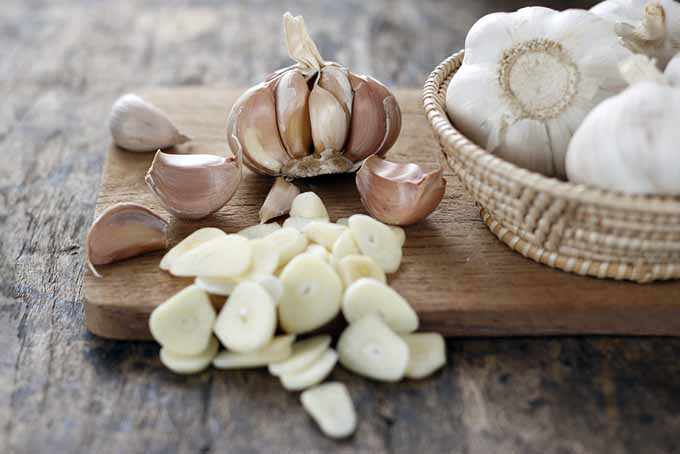 Sliced Garlic Cloves | GardenersPath.com