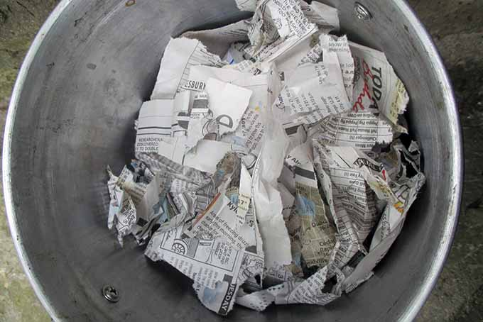 A top down picture of a small metal vermicompost container with torn up newspaper to add carbon.