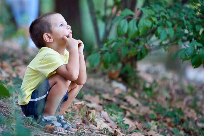 A close up of a little boy sitting in the garden among fall leaves and foliage in the background.