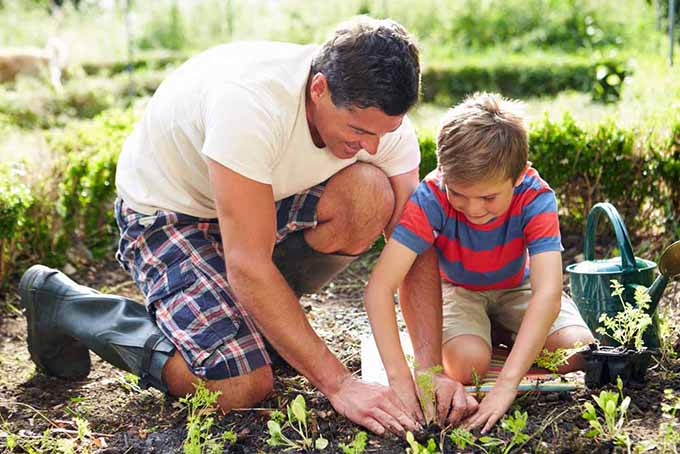 father-and-son-planting-seedlings