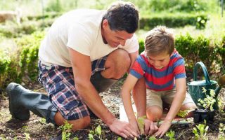 Your Go-To Guide for Gardening with Children