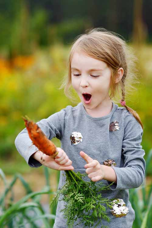 Teach your kids the wonders of gardening with this informative guide from Gardener's Path! You'll find everything you need to know right here: https://gardenerspath.com/how-to/beginners/gardening-children/