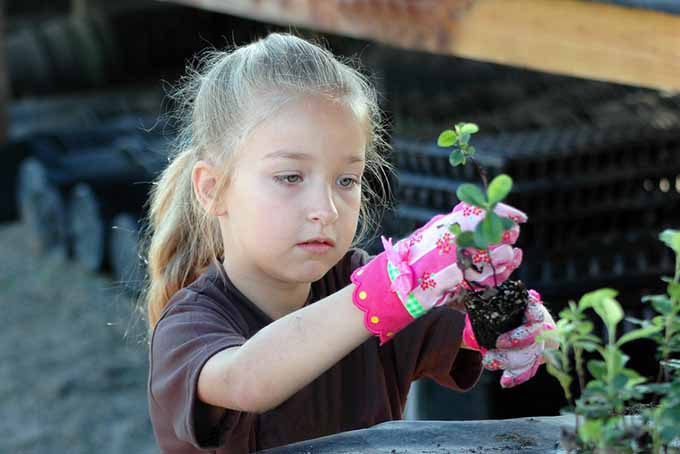 Gardening Guide for Children| GardenersPath.com