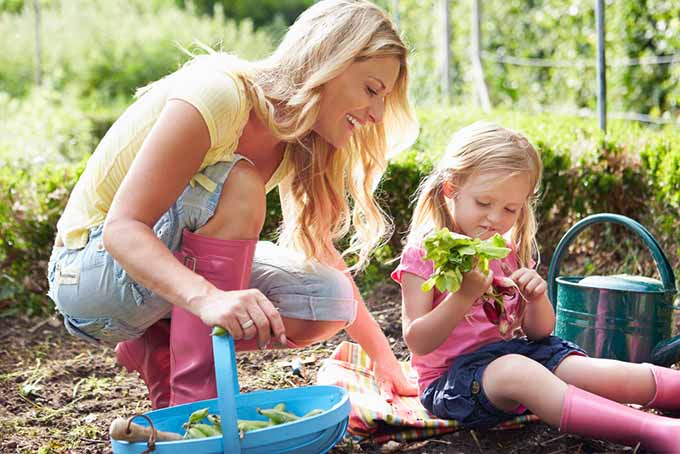 Gardening with Children How-to guide|Gardener'sPath.com