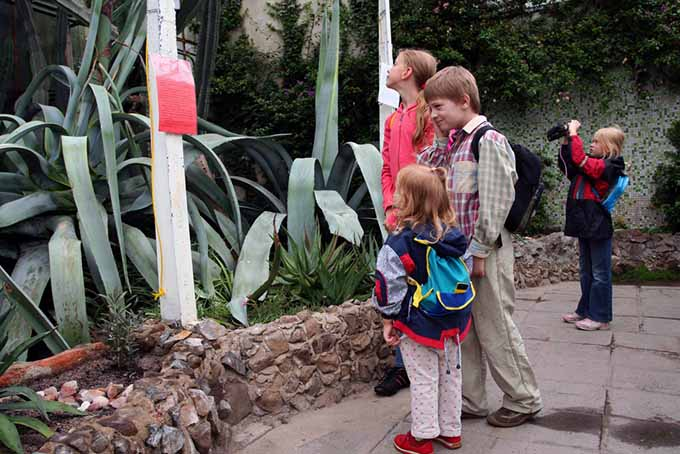Gardening with Children Kids at Greenhouse | GardenersPath.com
