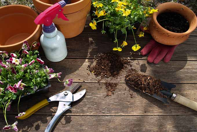 Tools and Containers on Porch | GardenersPath.com