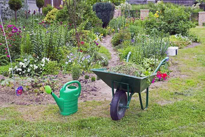 Beneficials Wheelbarrow in Garden | GardenersPath.com