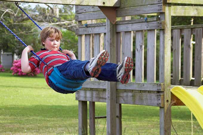 Boy on Swing | GardenersPath.com
