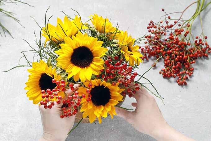 Final Floral Arrangement| GardenersPath.com