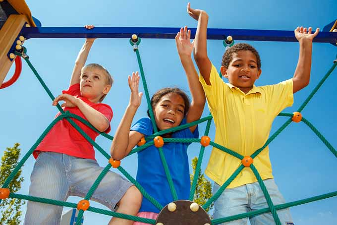 Three Kids Climbing Netting | GardenersPath.com