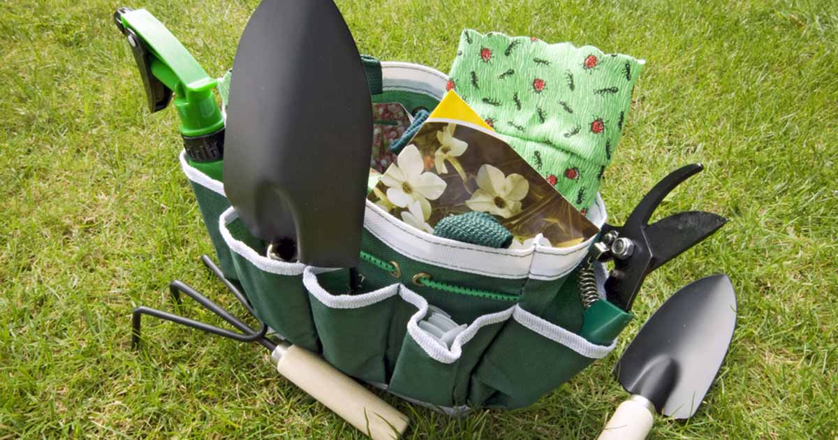 Best gear and tote bags for gardening gardener 39 s path for Small garden tool carrier
