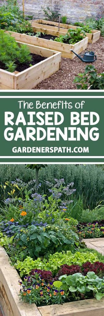 Raised beds are excellent for those with hard clay or soils with too much sand. They assist with drainage for climates with too much rain and help retain moisture for those who don't get enough. And they are ideal for those with back and knee problems. Read more about the benefits of these gardening enclosures now!