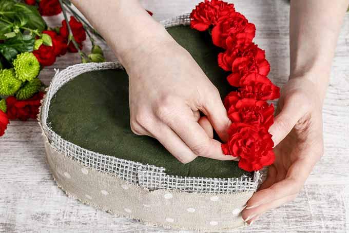Step by Step Blooming Heart Centerpiece | GardenersPath.com
