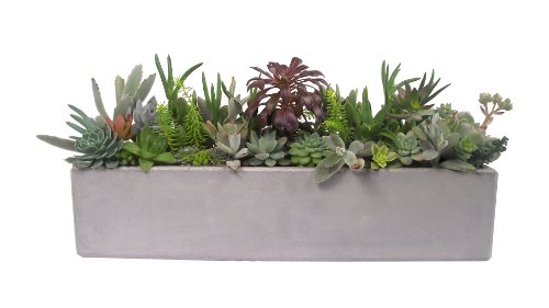 What Is the Best Material for Plant Pots, Containers, and Planters? Small Greenhouse Planter Design on small hotel designs, small greenhouses for backyards, small science designs, small pre-built homes, small boat slip designs, small garden designs, small carport designs, small green roof designs, small boathouse designs, small wood designs, small industrial building designs, small flowers designs, small bell tower designs, small floral designs, small spring designs, small business designs, small sauna designs, small glass designs, glass greenhouses designs, small gazebo designs,