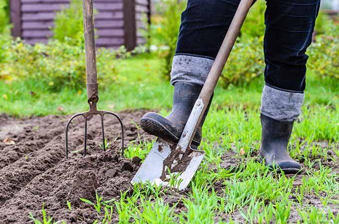 Dig in to our springtime gardening checklist.   Gardenerspath.com