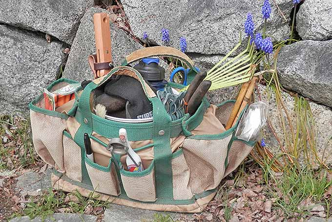 A green and tan gardening tool kit bag filled with tools, seeds, and other gardening supplies, with a rock wall and blooming grape hyacinths in the background.