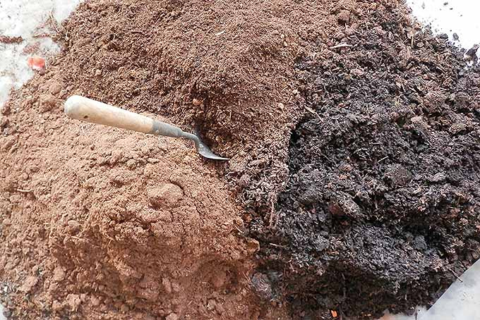 A combination of top soil, compost, and peat is best for growing leafy greens. | Gardenerspath.com